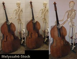 Skeleton and Cello Stock II by Melyssah6-Stock