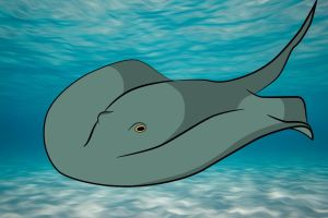 How To Draw A Stingray by a-watt89