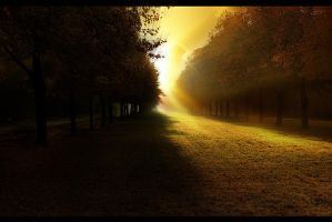Forever Autumn by phil2001