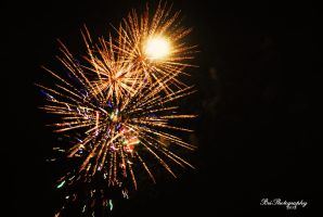 Celebrating Independence by PhotographsByBri