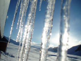 Icicles by Niniel-