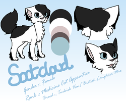 Reference // Sootpaw/cloud by nooks-crannies
