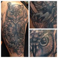 owl coverup by tka13