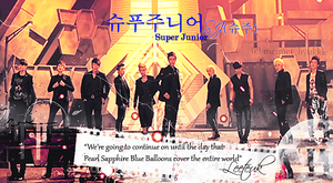 SuperJunior ELF INDIA Fanbase Page Banner~ by Meimei12