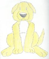 Sitting Yellow Dog by Traxer