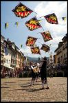 Waldkirch '06 - Flagthrowers by malaskor