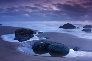 Cannon Beach - Tide Pools by pyro303