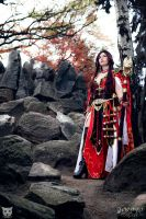 Wizard - Diablo III - daraya cosplay by Daraya-crafts