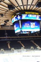 MADISON SQUARE GARDENS II by faberryspork