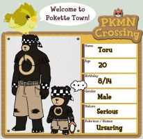 PokeCrossing: Toru by Illuminatii