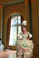 18th century Court Dress by AlAlNe