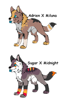 2 Pups to ~OokamiSpirit by MichelsAdoptions