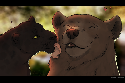 Bagheera and Baloo by ShadowOfTheMeadow
