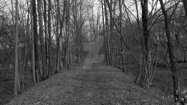 Down the Trussel Trail by JadedFate458