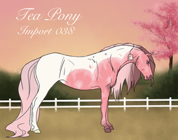 Tea Pony Import 038 by BrindleTail