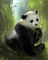 Panda Commission by Smirtouille