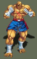 sagat revenge 2 by Shayeragal