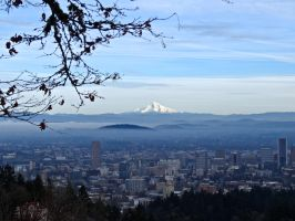 Mt Hood, fog and Portland, Oregon by treeblue
