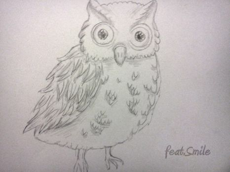 Owl. by featSmile