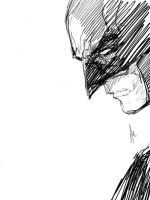 The BATMAN by Archonyto
