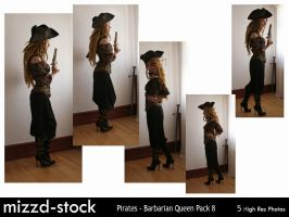 Pirates - Barbarian Queen Pack 8 by mizzd-stock
