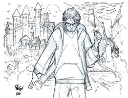 HARRY POTTER by Wieringo