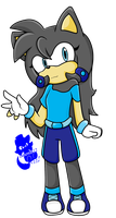 .:PC:. SX- Anne the hedgehog by elisonic12