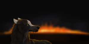 Let it all Burn by CrossHound213