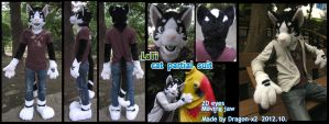 Lati - cat partial suit by dragon-x2