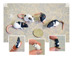 Four Black and White Dime Rats ~ Eckto Commission by nEVEr-mor