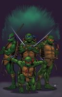 Turtle Power colors by NJValente