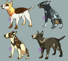 Free Bull Terrier Adopts! {CLOSED} WINNERS! by Ticklebutt
