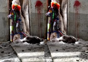 Somebody call for funny clown? by PhotoNovotna