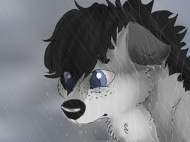 Wet Dog by xReox
