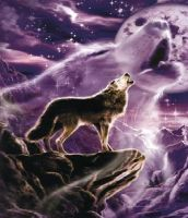 Howling wolf by T--K