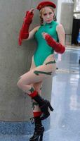 Cammy - Street Fighter II by popecerebus