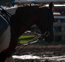 Fair 22 by erl-stock