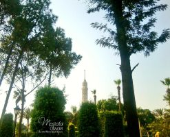 Cairo Tower by Olwant