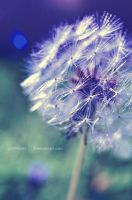 Comme une bulle by pipolaki123