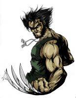 Wolverine Civil by thiagoflu320