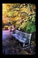 Bench by digitaldreamz666