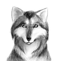 Wolf portrait by KajatheDog
