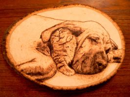 Bloodhound and cat - Wood Burning by brandojones