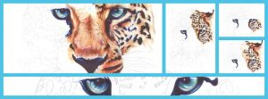 Ballpoint pens: Leopard by Dry89