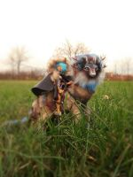 SOLD Magic wolf Tovrin and girl Elf by JulyGass