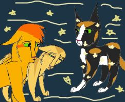 Firestars Quest: He Loves You More, Spottedleaf by Cardinalpaw