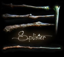 Splinter by Eclectixx