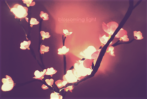 Blossoming Light by Kezzi-Rose