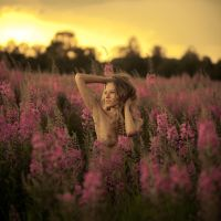 Sunset in fields by vpotemkin