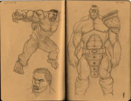 hulk study expressions and pose #2 by alch3mist-design